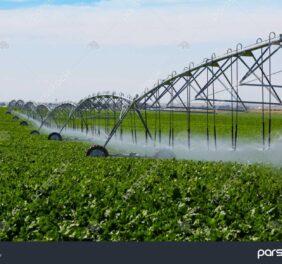 واگذاری شرکت خاص کشاورزی رتبه ۵