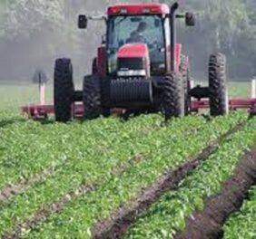 فروش شرکت رتبه ۵ کشاورزی