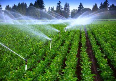 فروش شرکت آب و کشاورزی تهران