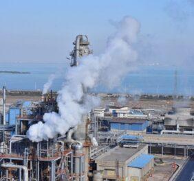 شرکت رتبه ۵ نفت و گاز