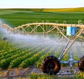 رتبه ۵ کشاورزی